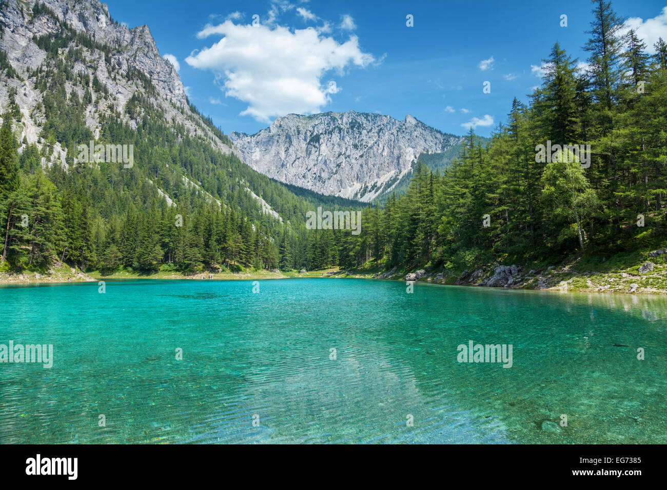 Grüner see with crystal clear water in Austrian Alps Stock Photo