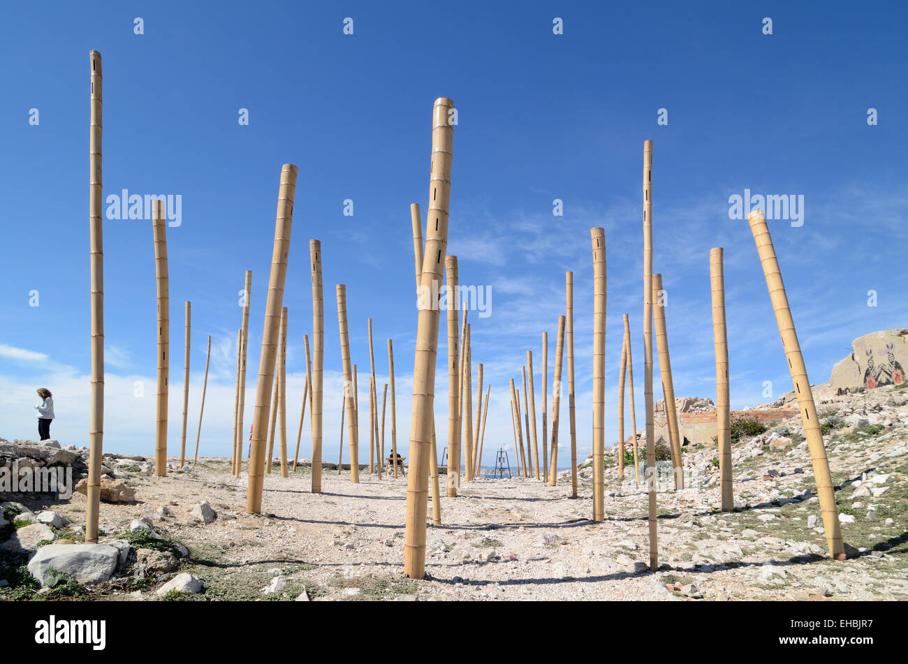 Wind instrument musical bamboo poles or art