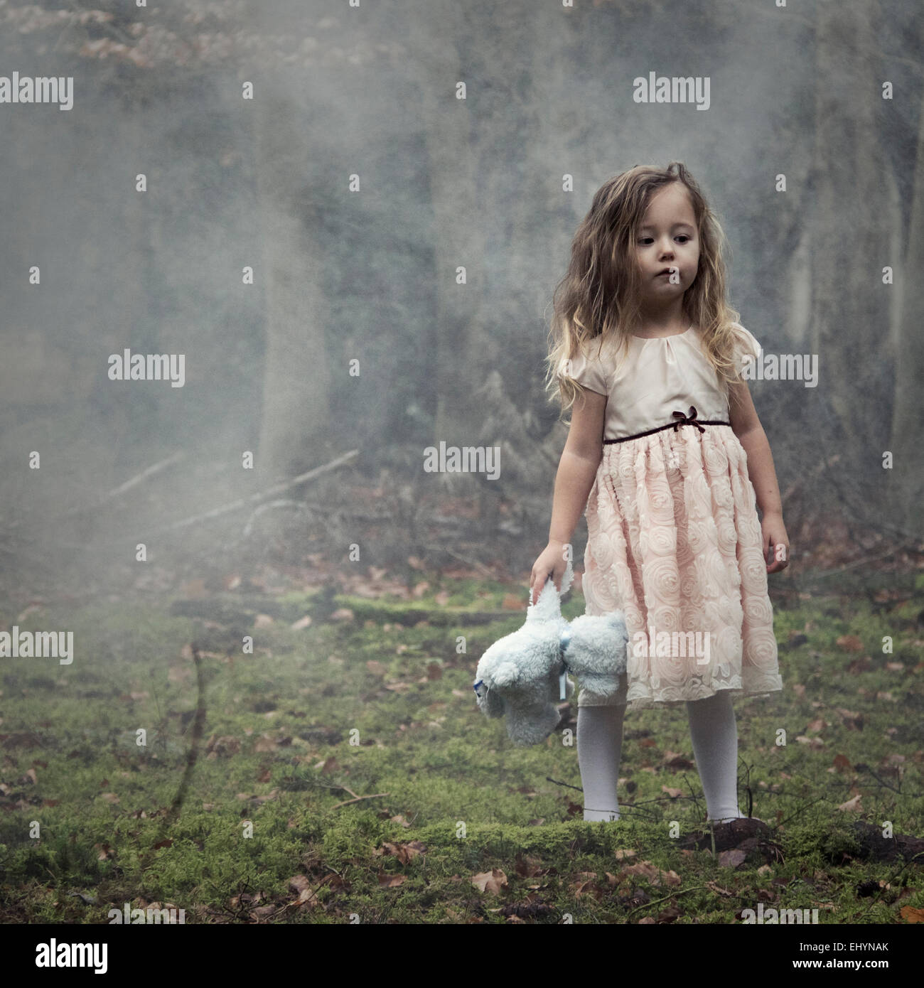 girl standing in the woods holding a teddy bear stock