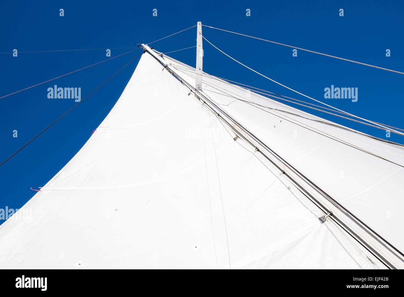 looking-up-the-mast-with-sails-out-on-th