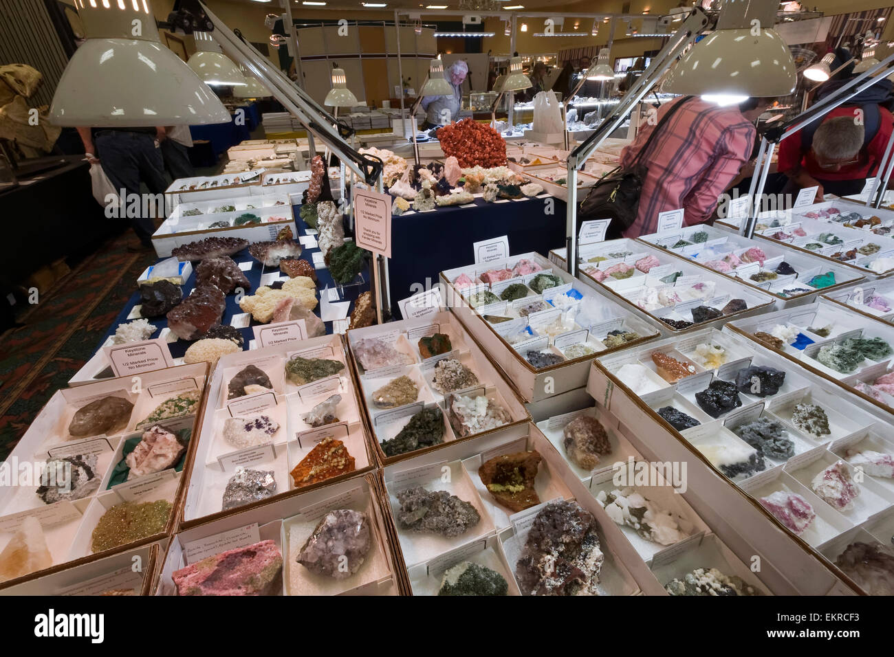 rocks and minerals for sale tucson gem and mineral show