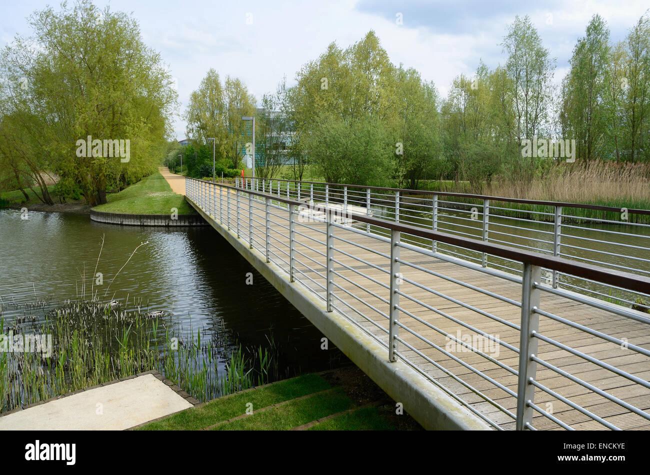 a-bridge-over-the-lake-at-green-park-reading-ENCKYE.jpg