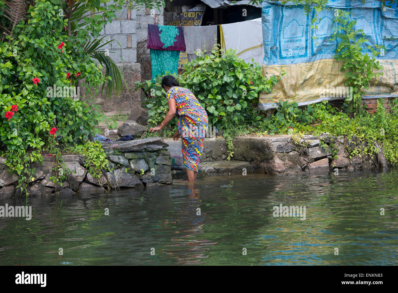 India Kerala Alleppey Backwater Canals Of Kerala In The