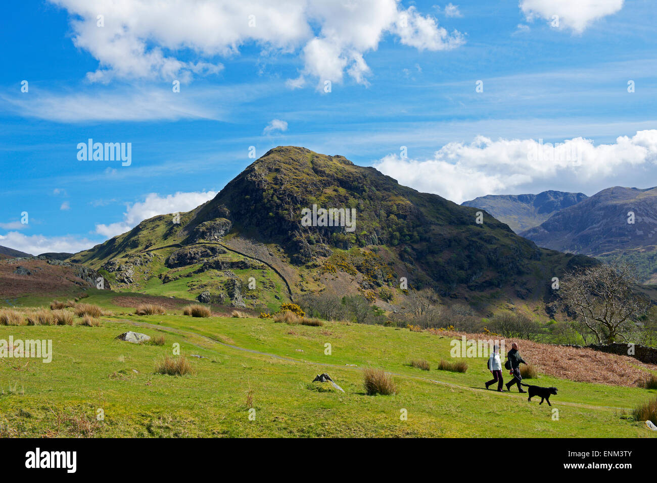 two-walkers-and-dog-in-rannerdale-lake-d