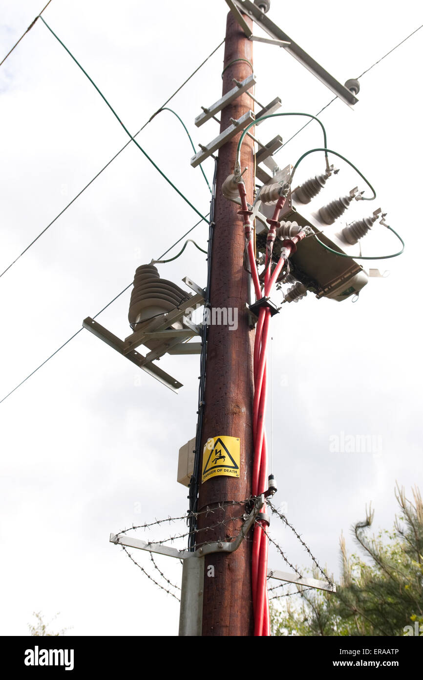 overhead-wires-supported-by-pole-ERAATP.