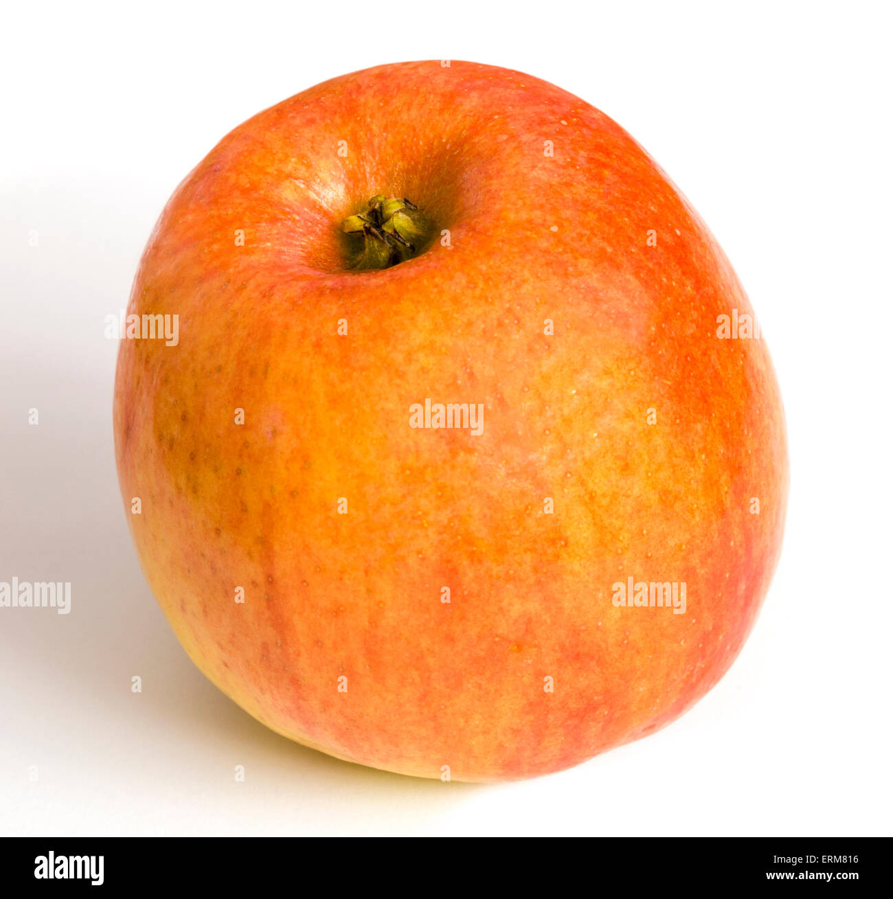 Braeburn apple on a white background. Stock Photo