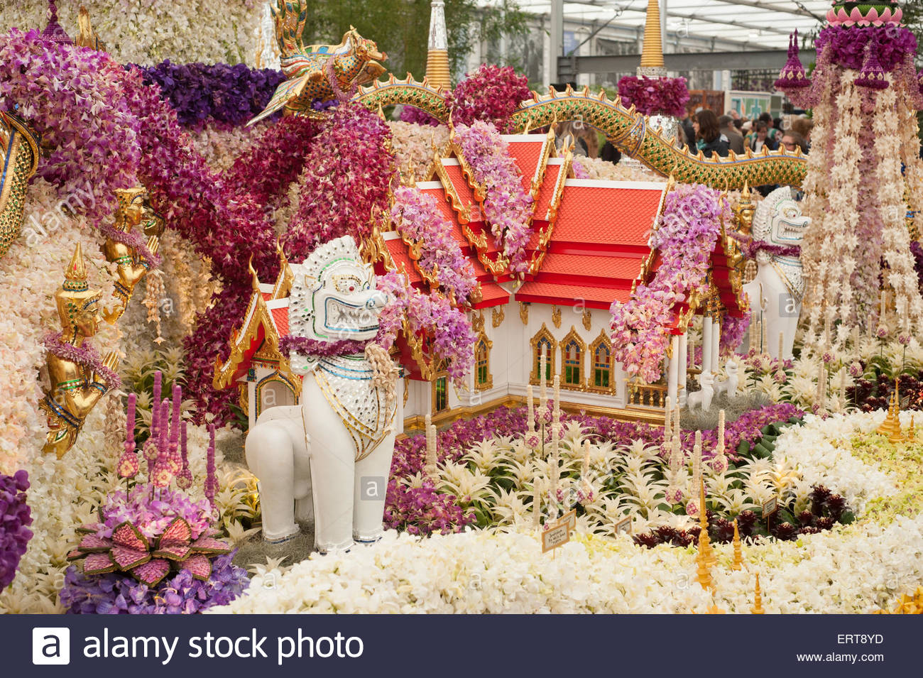 Rhs chelsea flower show 2015 display of the nong nooch tropical stock photo royalty free image - Royal flower show ...