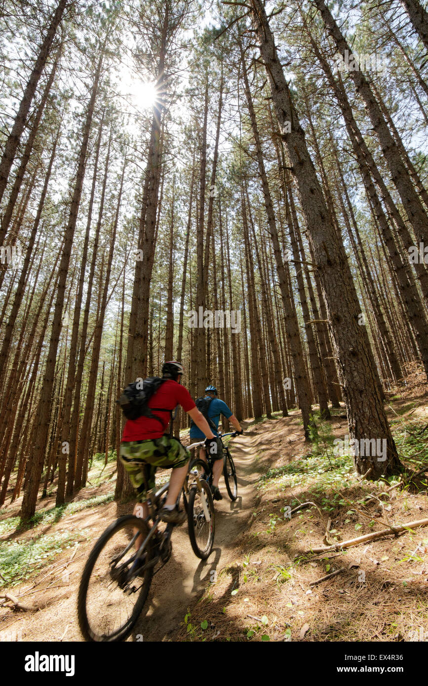 mountain-biking-on-the-webs-trail-at-the
