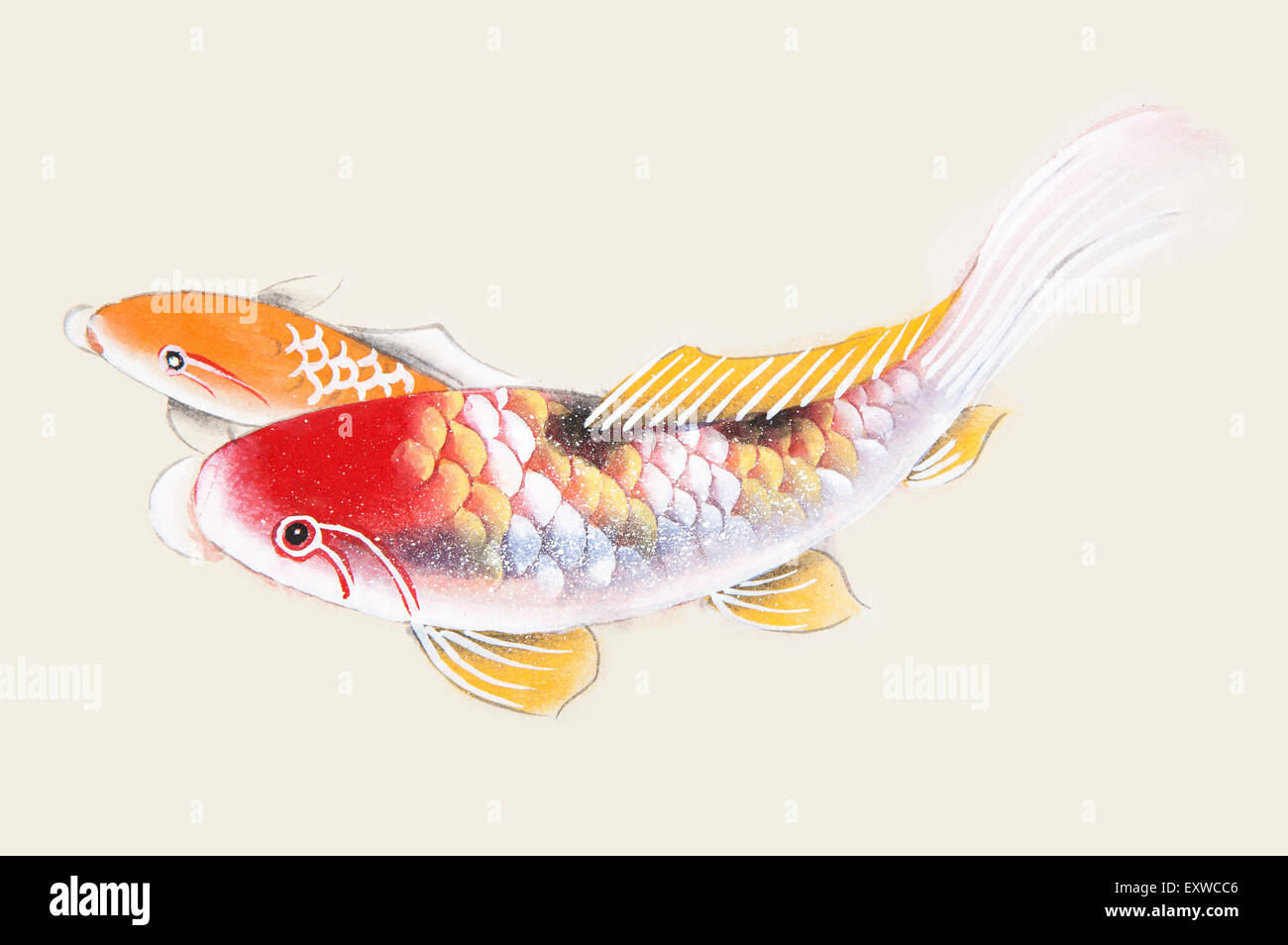 Traditional chinese painting koi carp fish stock photo for Chinese art koi fish