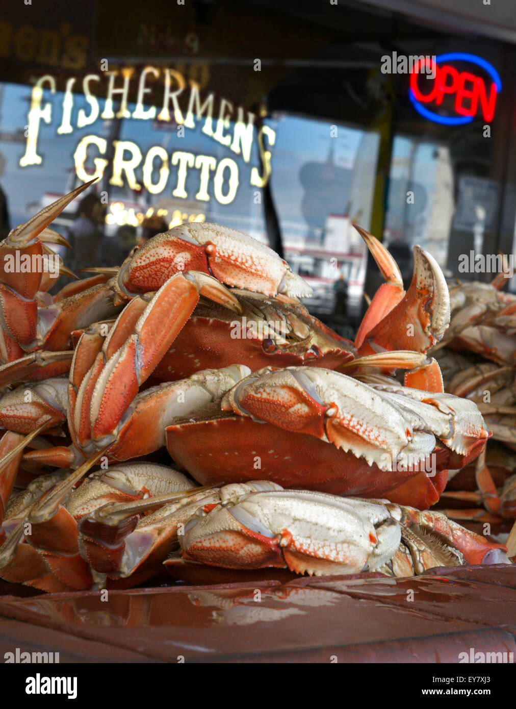 freshly-steamed-dungeness-crabs-waiting-