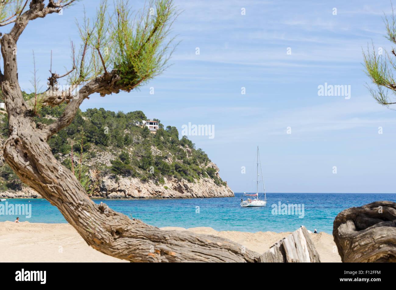 cala-san-vicente-beach-ibiza-spain-F12FF