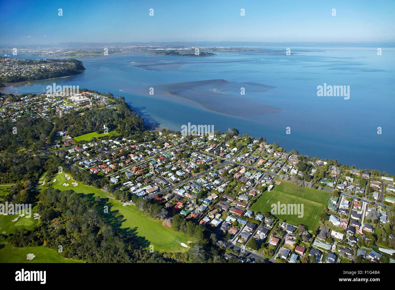 titirangi golf course green bay and manukau harbour auckland stock photo royalty free image. Black Bedroom Furniture Sets. Home Design Ideas