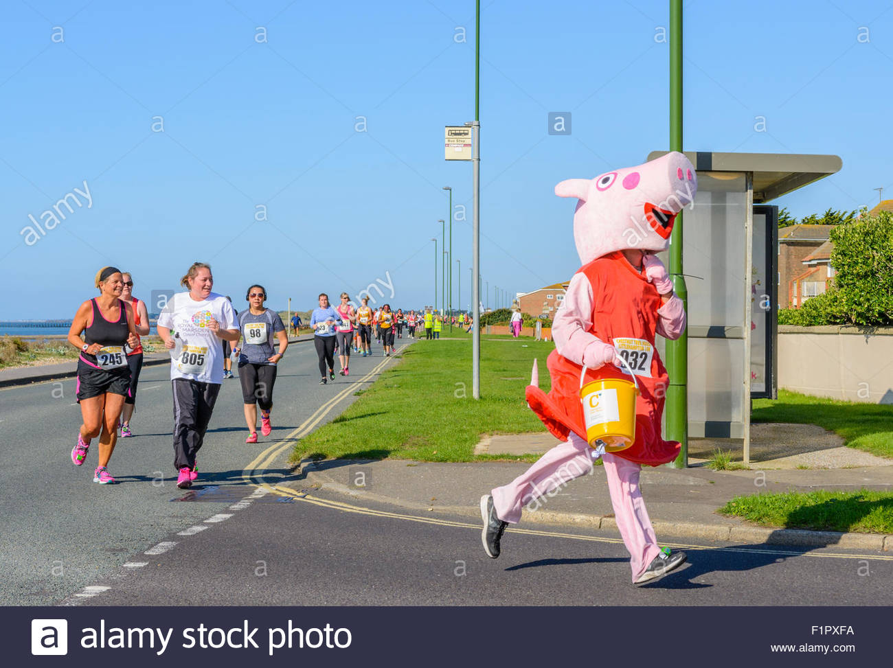 runner-dressed-at-peppa-pig-at-the-chestnut-tree-house-10k-charity-F1PXFA.jpg