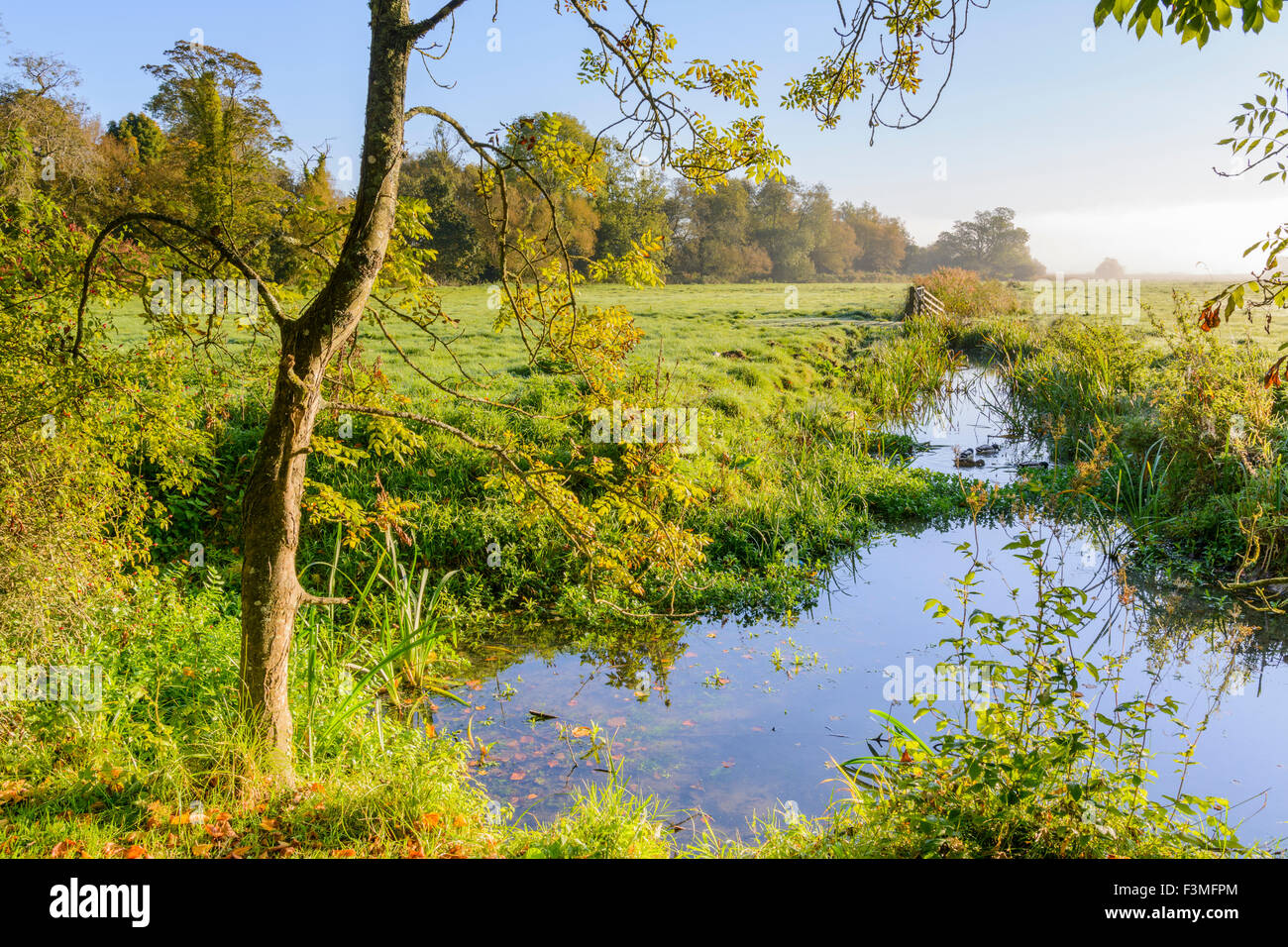 countryside-field-with-water-in-autumn-i
