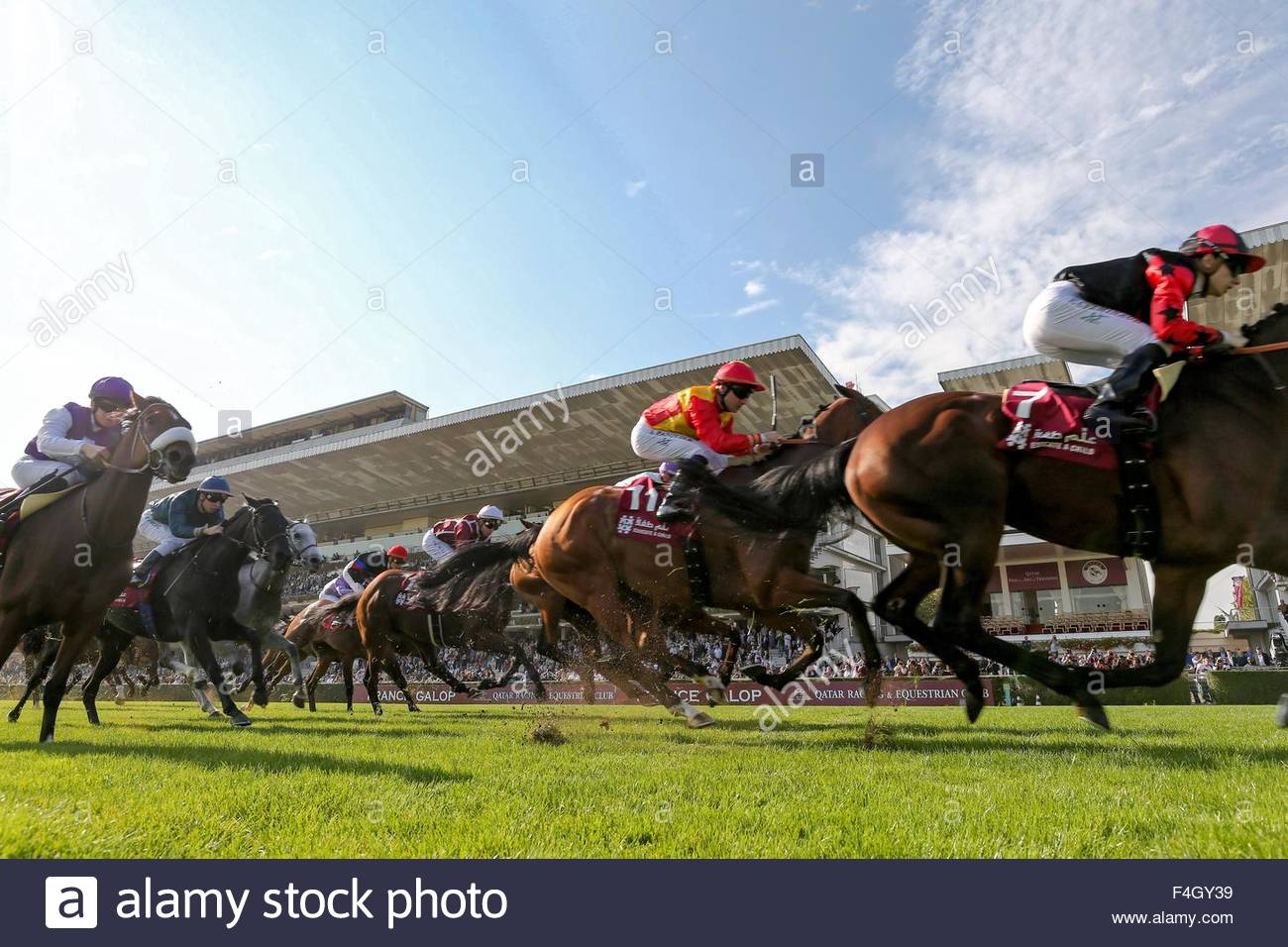 Paris, France. October 3rd, 2015. FRANCE, Paris: Jockeys get on horses for Qatar Grand Handicap des Milers during Stock Photo