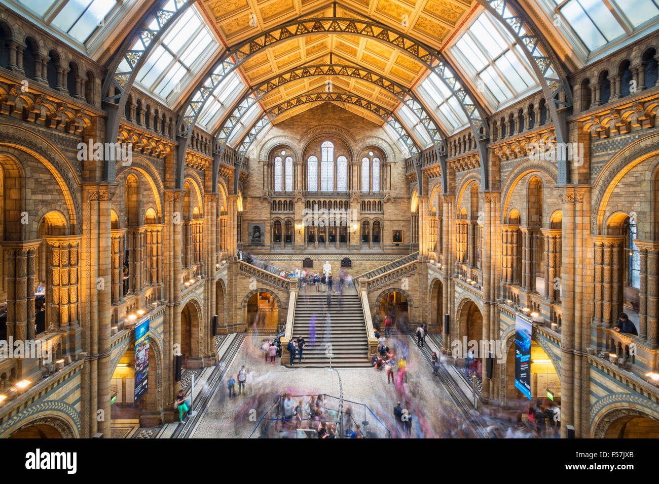 Foyer Museum Uk : Visitors inside the central hall of natural history