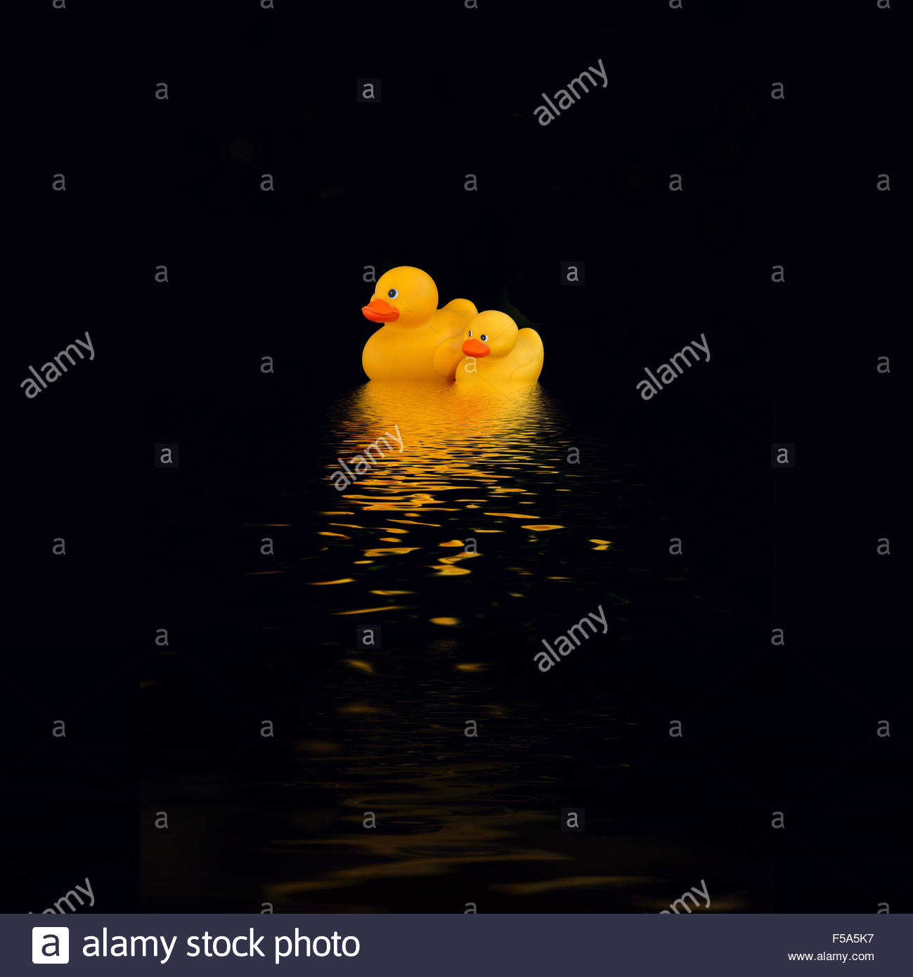 digital-illustration-ducks-that-pass-in-the-night-F5A5K7.jpg