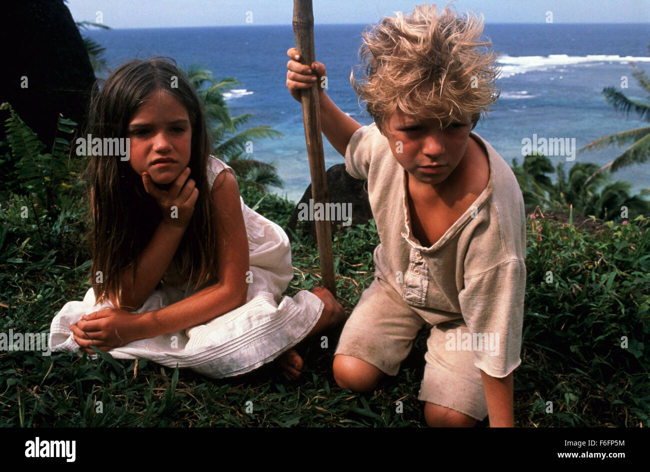 desert island dating Desert island dating log in not a member sign up username: password:  contact website website by optimo information technology llc x contact.