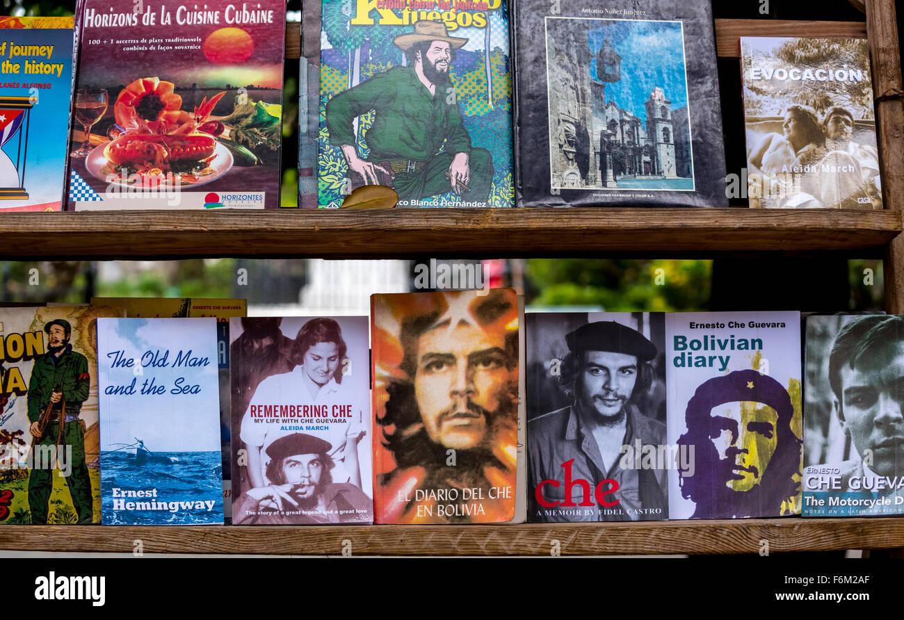 ebook the feminist poetry movement