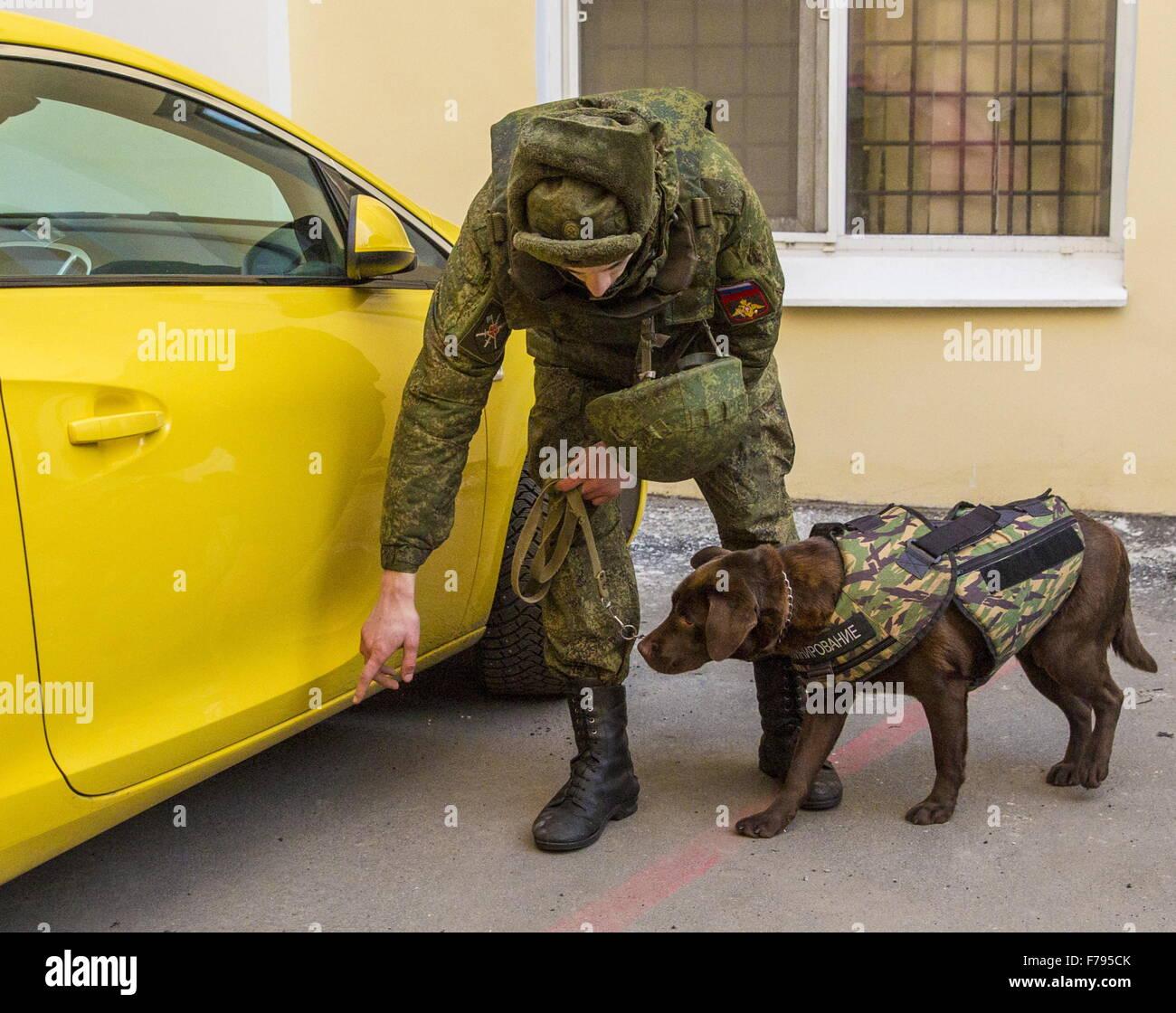 Service Dog St Petersburg