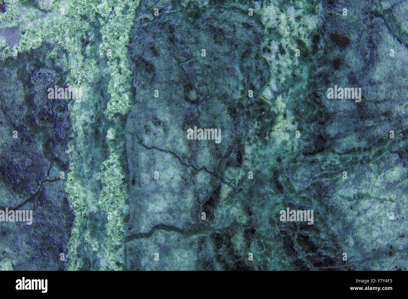 Green Marble Slab : Green light blue marble granite stone slab surface stock