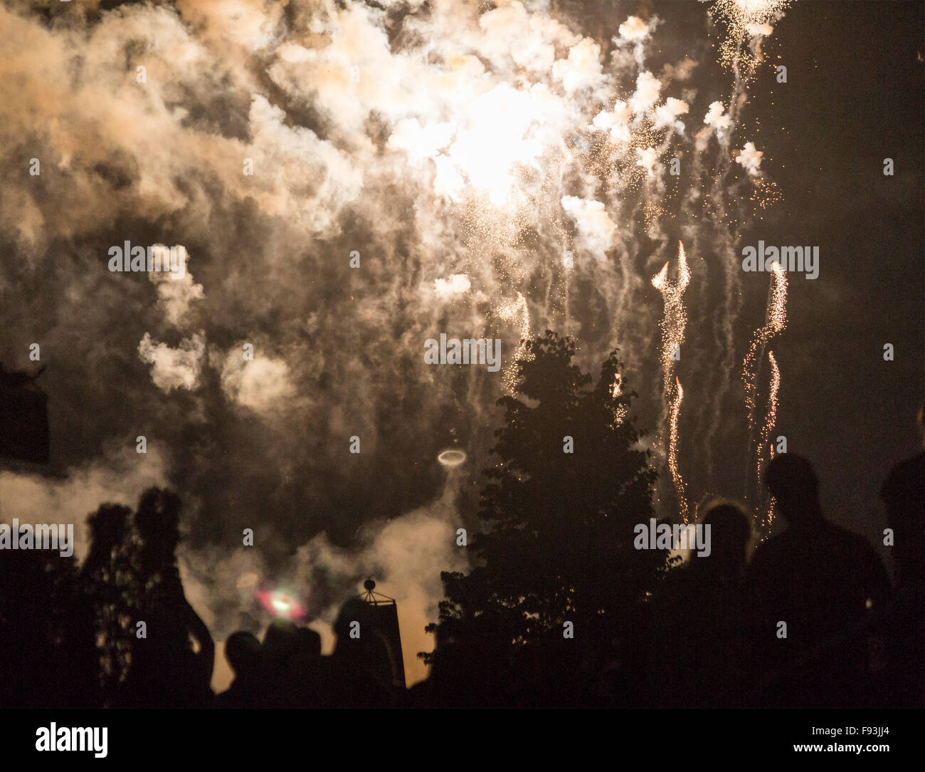 fireworks-display-on-canada-day-at-harbo