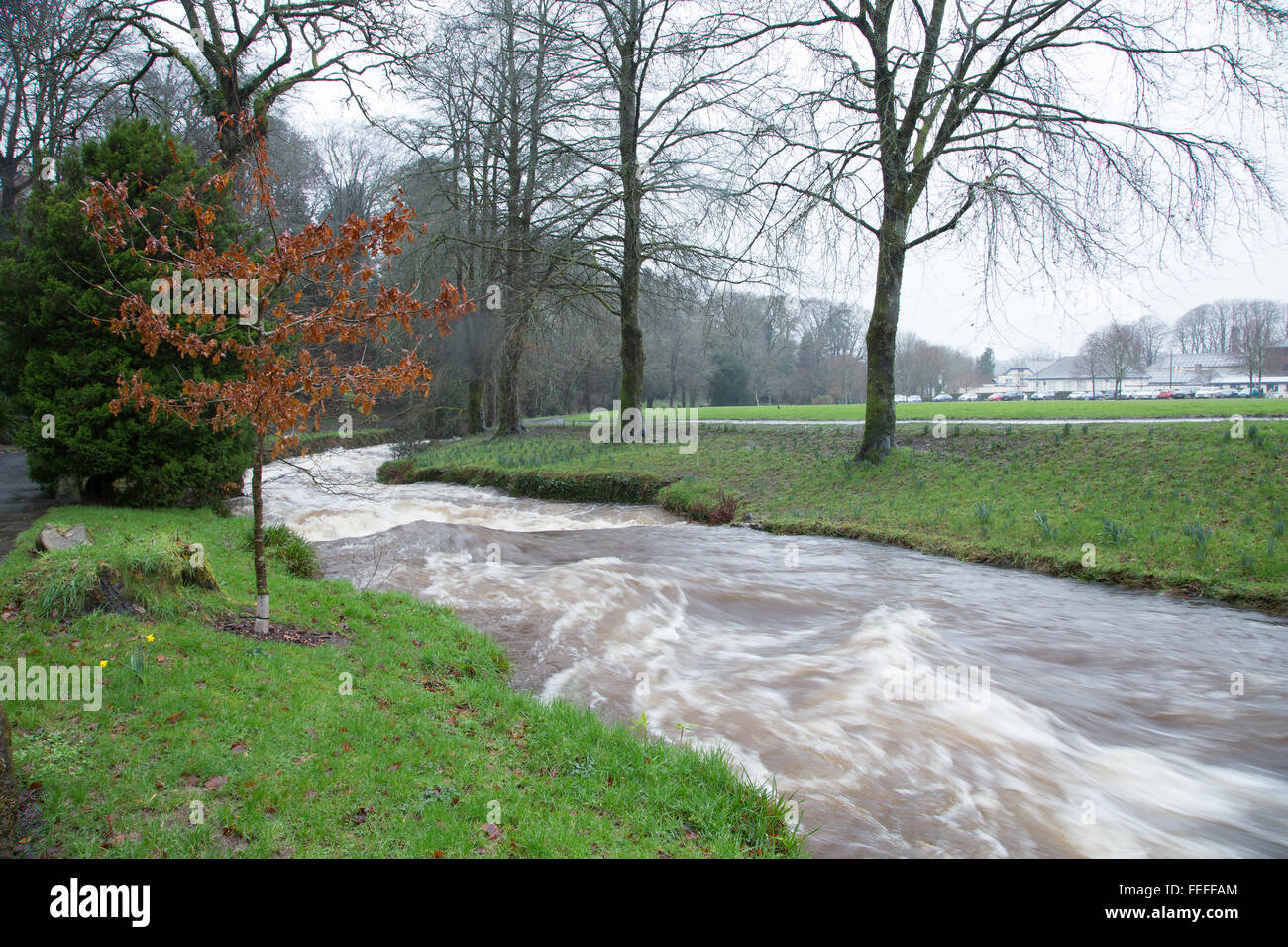 Okehampton, Devon, UK. 6th February, 2016. High river levels at Simmons Park in Okehampton during storm Credit: Stock Photo
