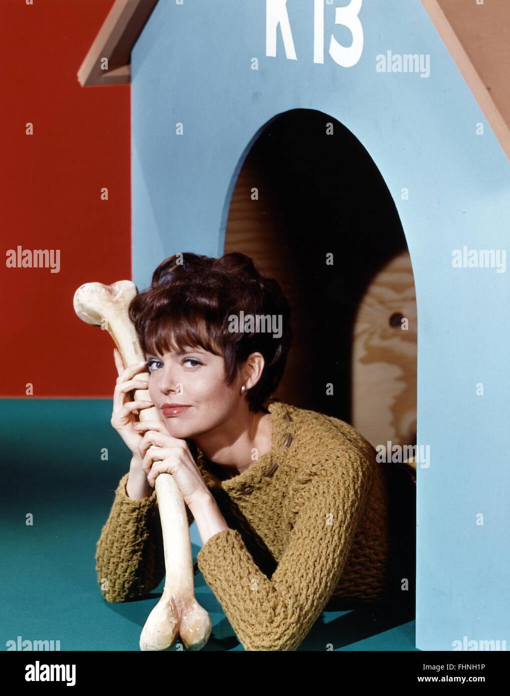barbara feldon get smart 1965 stock photo royalty free