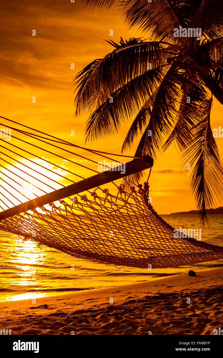 Hammock on a palm tree during beautiful sunset on tropical ...