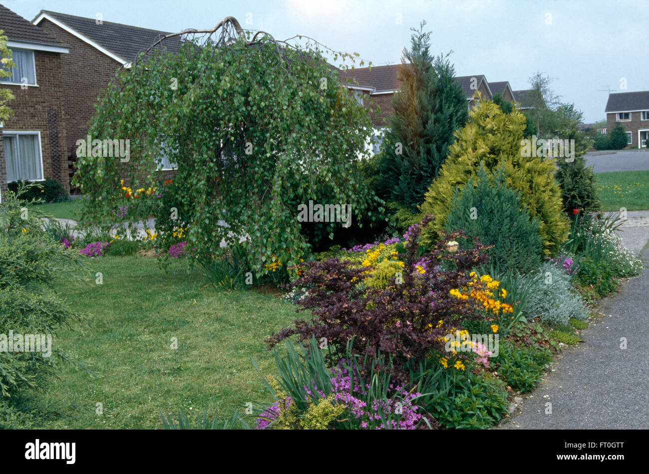 Small shrubs and colorful perennials in border beside lawn for Plants for small front garden