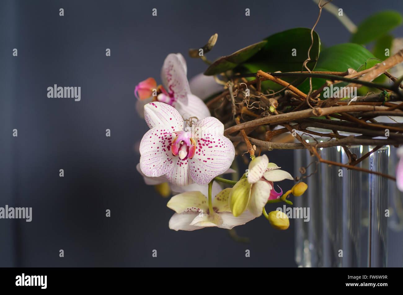 Part Of Festive Decor Close Up Festive Decorations