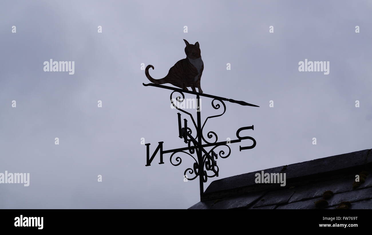 Cat weather vane pointing south on a overcast gloomy day Stock Photo