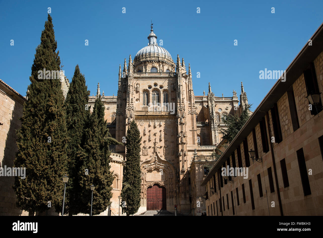 The New Cathedral (Catedral Nueva) of Salamanca, Spain ...