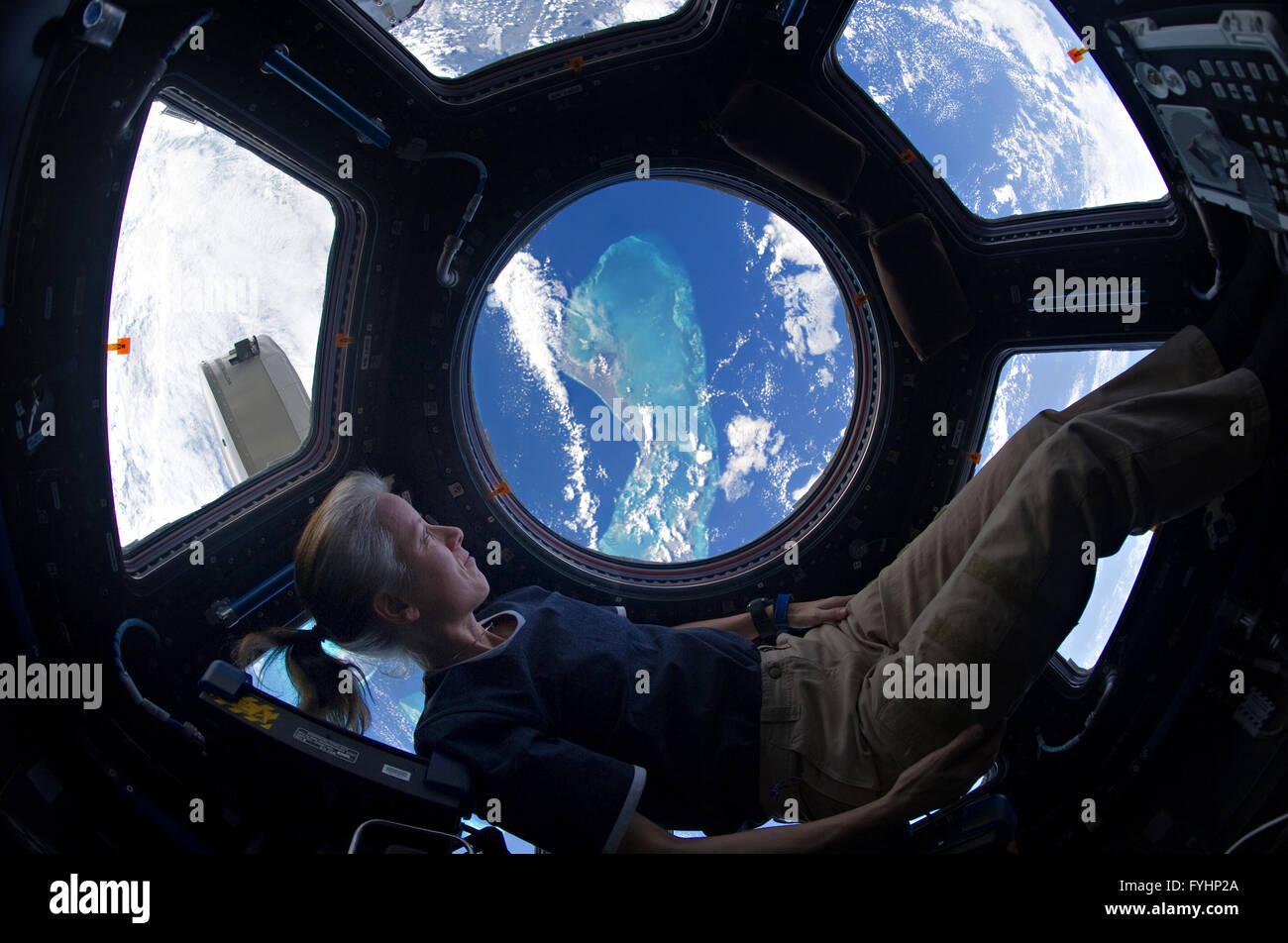 NASA astronaut Shannon Walker looking out of the ...