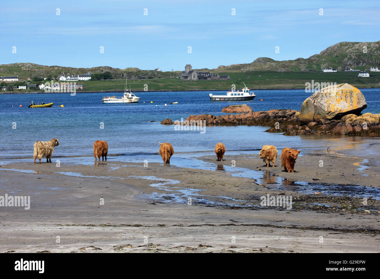 iona-scotland-uk-26th-may-2016-highland-