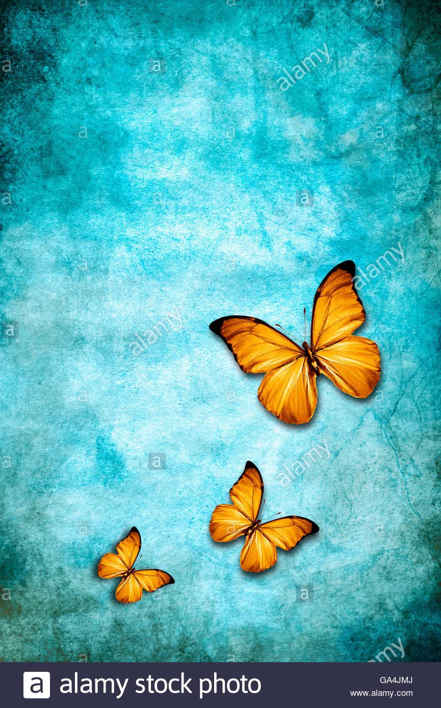 three butterflies on a blue grunge background Stock Foto