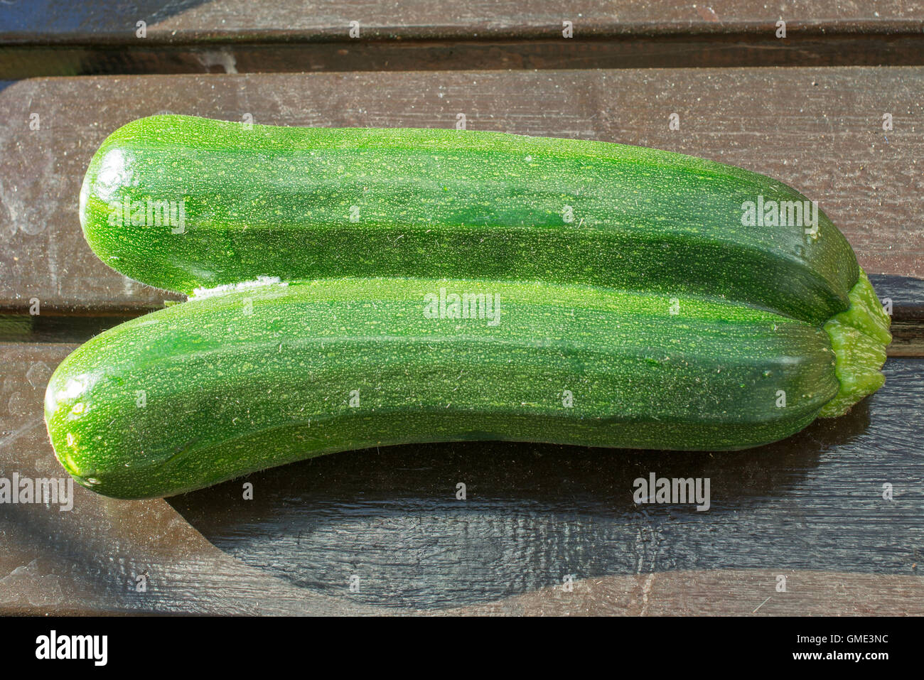 a-pair-of-conjoined-courgettes-variety-z