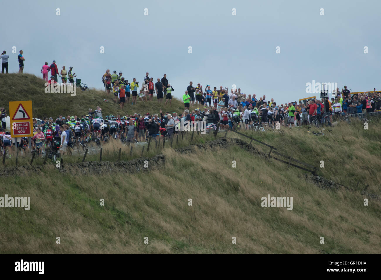 Cheshire, UK. 6th September, 2016. The peloton passing between appreciative crowds during the climb to the Cat and Stock Photo