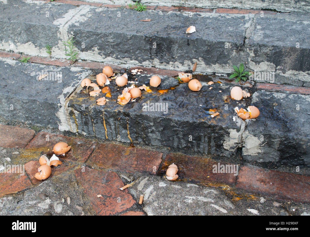 broken-eggs-on-steps-H29EKF.jpg