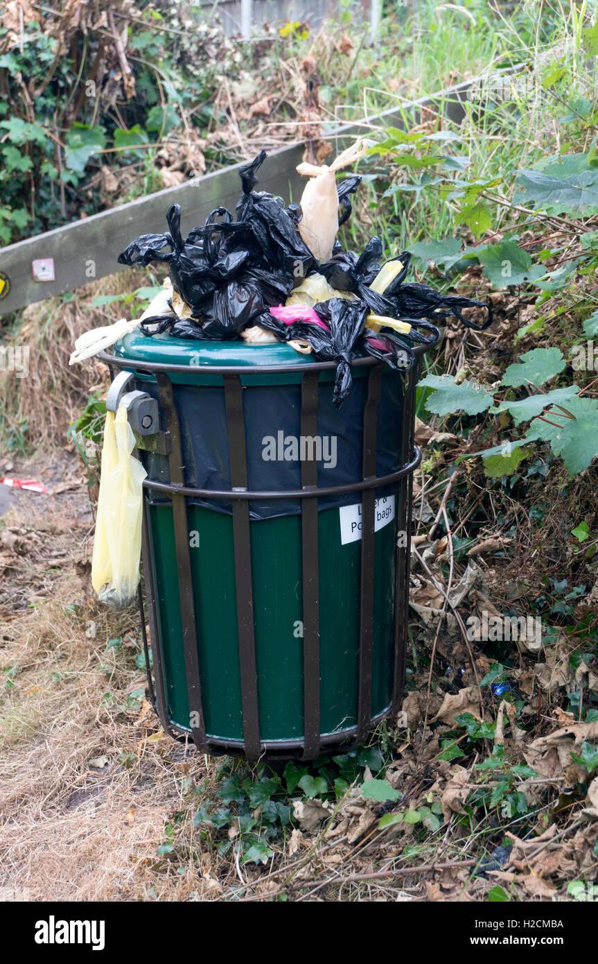 overflowing-dog-waste-bin-H2CMBA.jpg