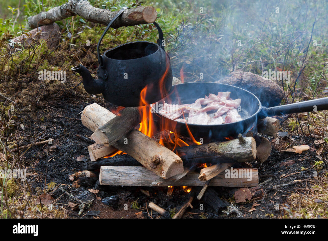 How To Boil Water The Forest