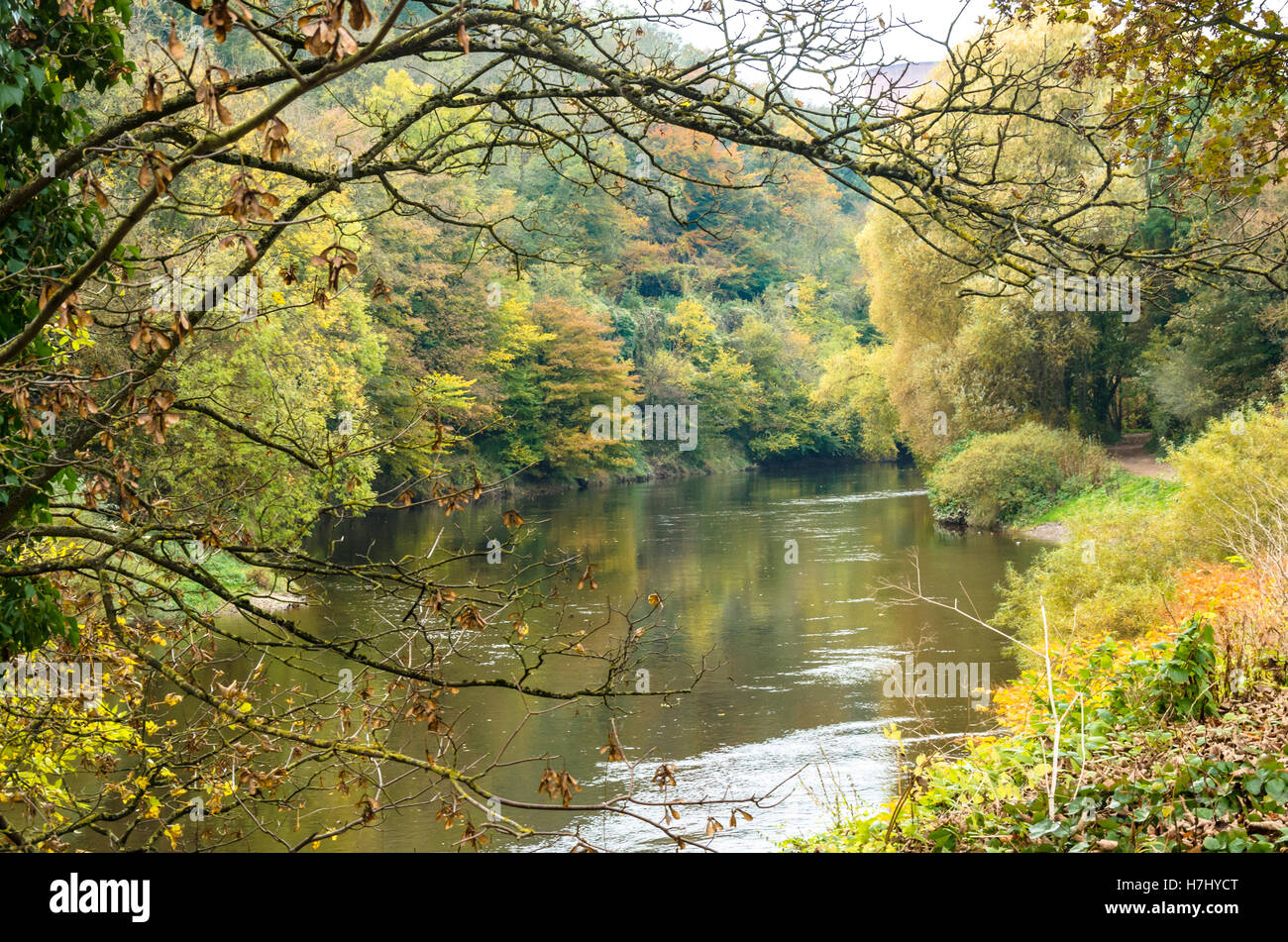 looking-down-the-river-severn-at-ironbridge-shropshire-uk-on-an-autumn-H7HYCT.jpg