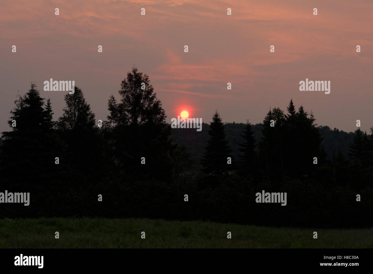 sunrise-at-the-farm-H8C30A.jpg