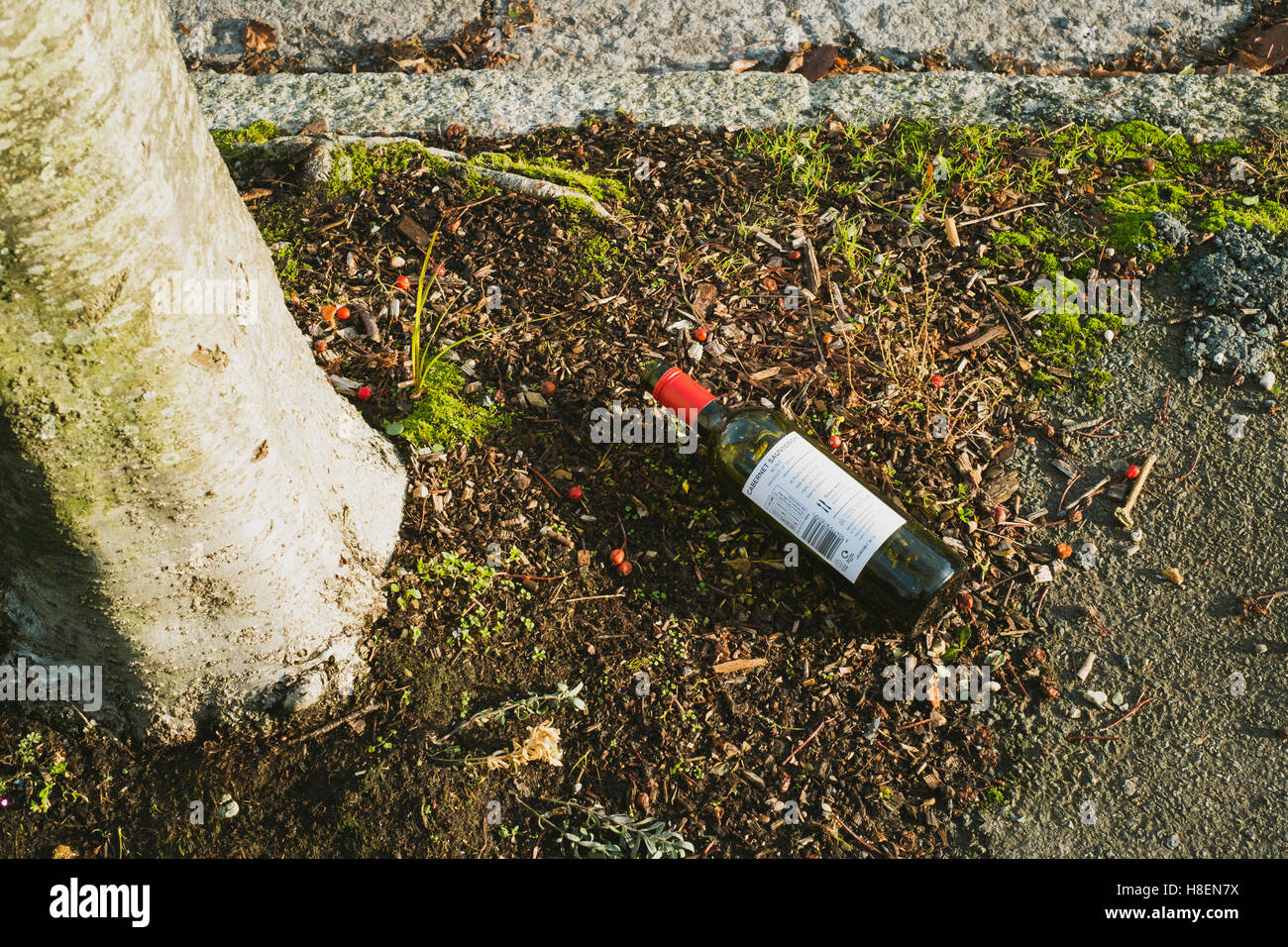 Empty bottle of red wine left on the pavement in a street in Falmouth, Cornwall 11th November 2016 Stock Photo
