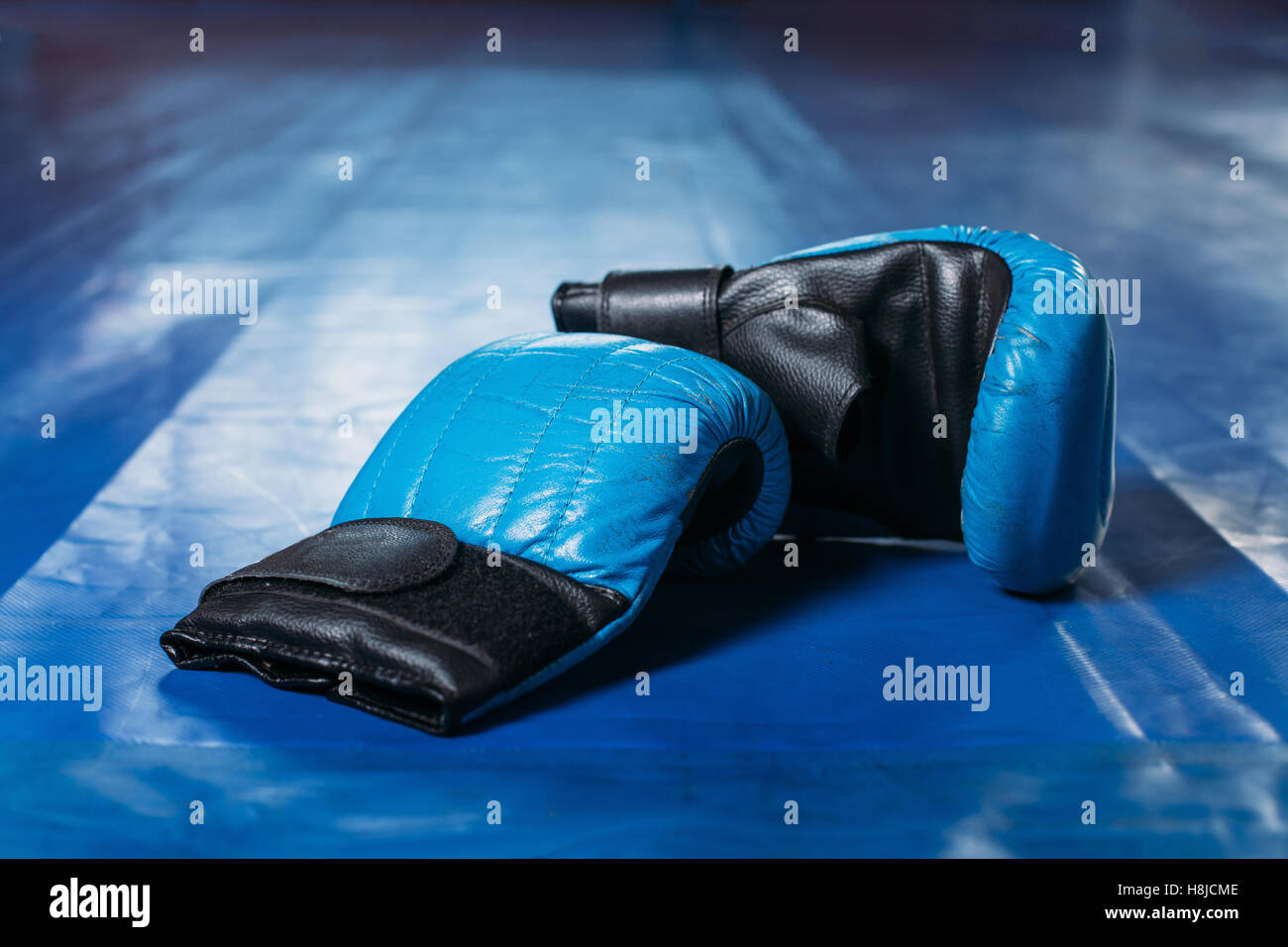Boxing gloves on the floor of the ring. Stock Foto