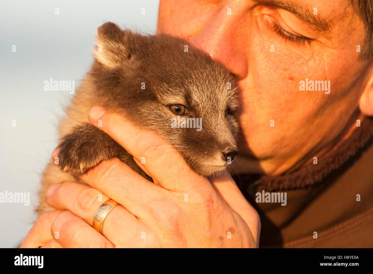 a-man-holding-an-arctic-fox-vulpes-lagopus-pup-H8YEXA.jpg