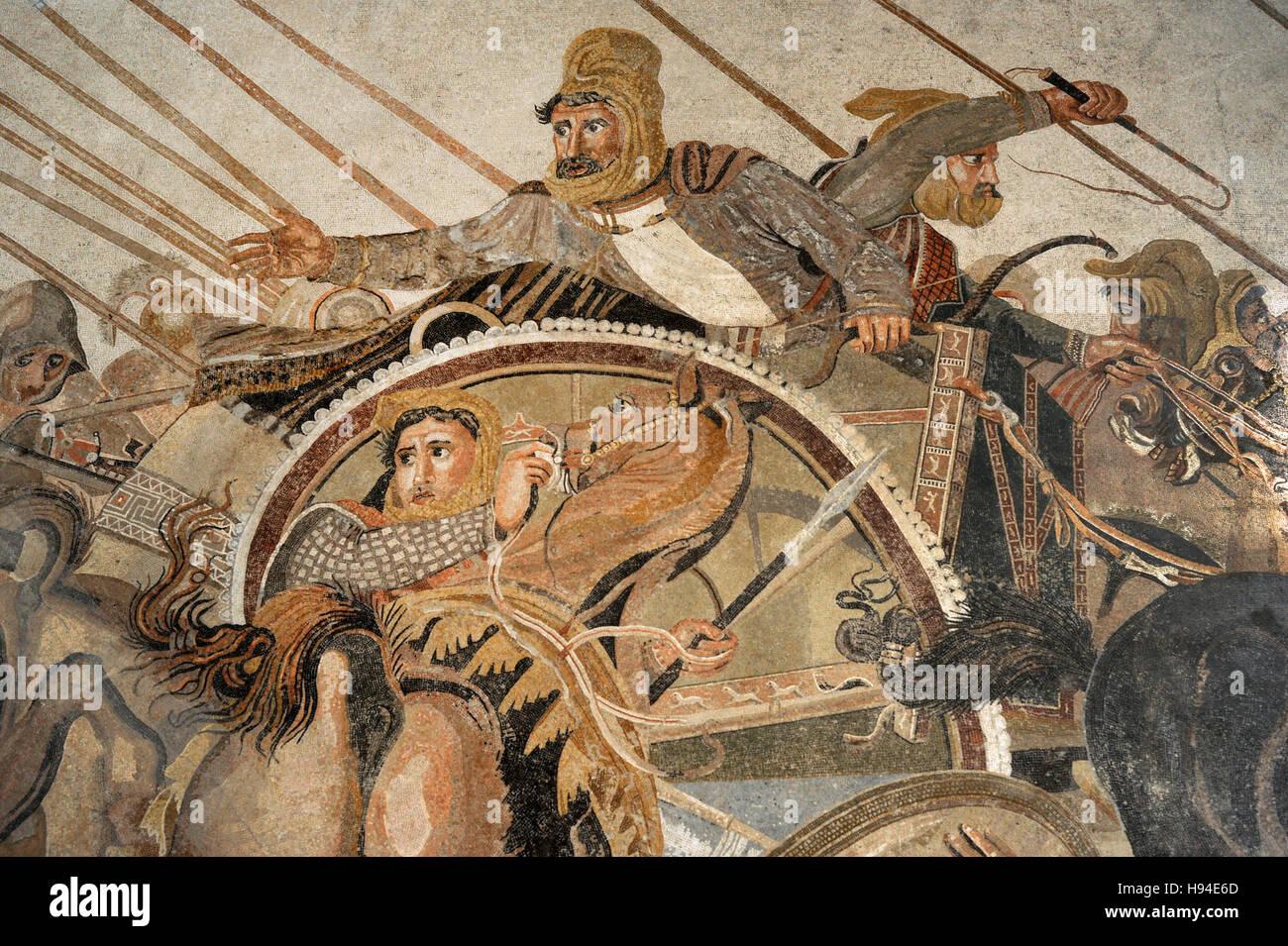 relationship between alexander and darius battle