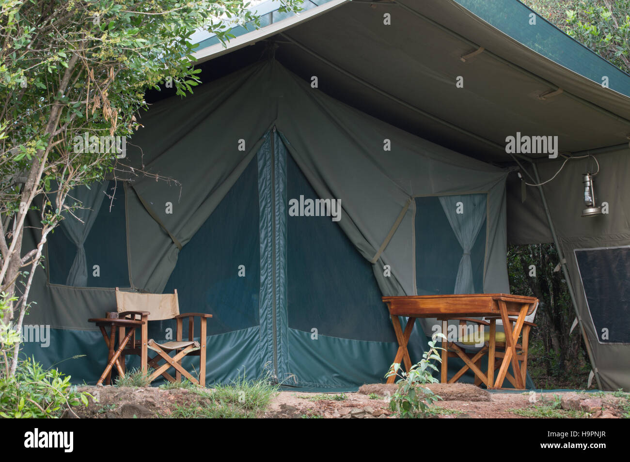 The exterior of a canvas safari tent with two chairs and a desk on the porch. Tent is located in the Masai Mara Kenya Africa & The exterior of a canvas safari tent with two chairs and a desk on ...