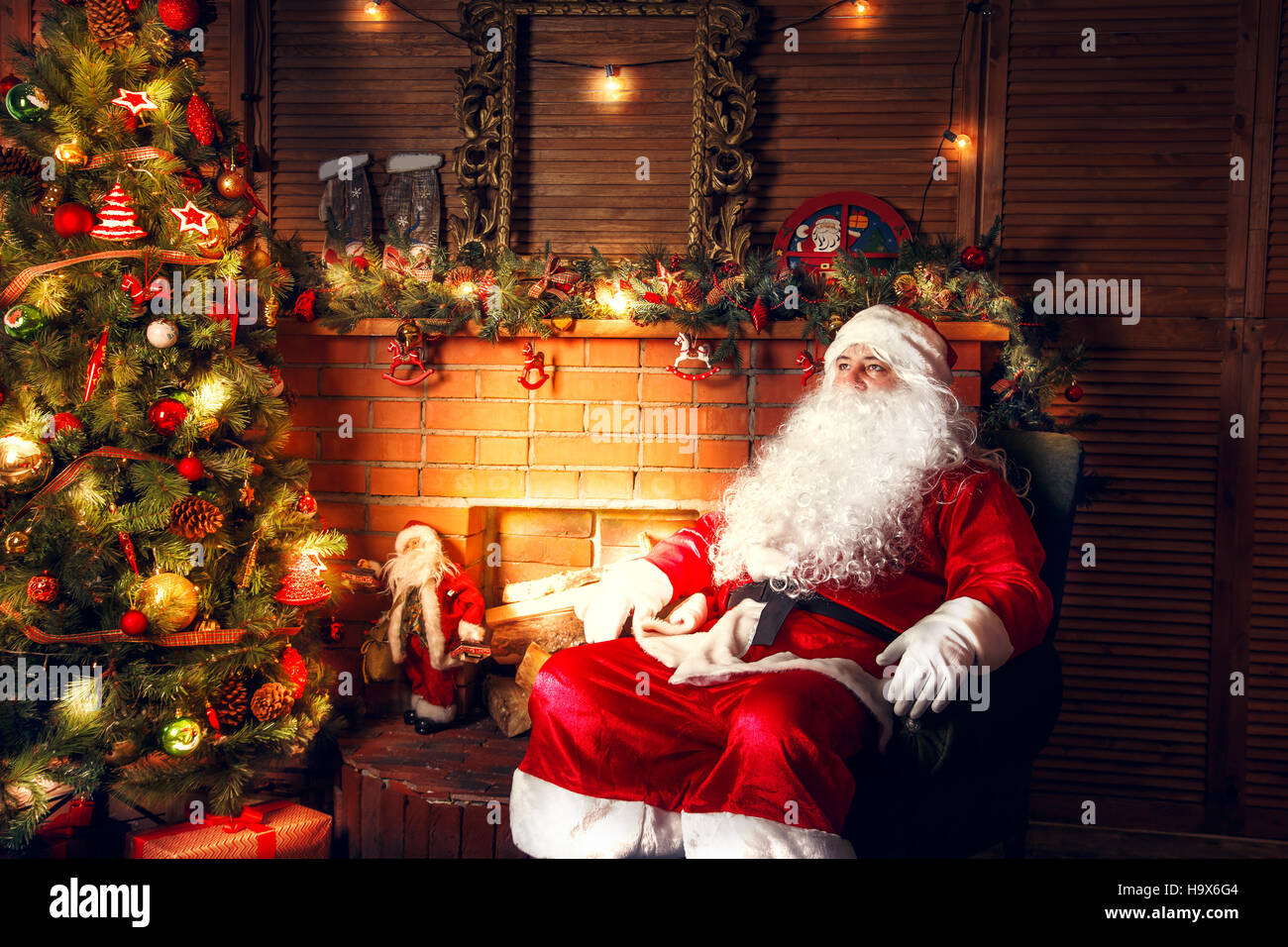Where To Buy A Real Christmas Tree