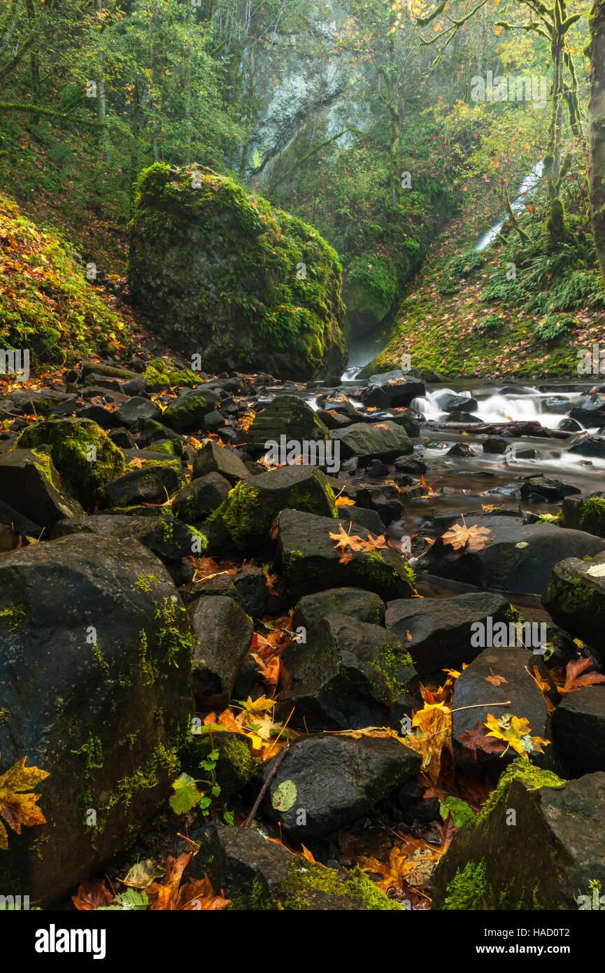 bridal-veil-falls-trail-oregon-slow-shutter-speed-shot-of-a-small-HAD0T2.jpg